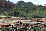 Logging carries on unabated 24hrs a day. Heavy trucks removing their huge cargos of logs from the rainforest. Home of the Kenyah native people who once lived in Long Geng, which was flooded by the Bakun Dam. Their community is now dispersed between Sungai Asap, Long Lewan and floating longhouses on the Bakun reservoir. Bakun Belaga region, Sarawak Borneo 2012<br />