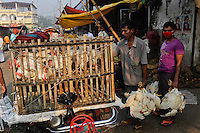 BANGLADESH Dhaka, mobile chicken shop on bicycle rikshaw / BANGLADESCH Dhaka, mobiler Gefluegel Laden auf Fahrradrikscha