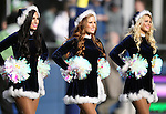 Seattle Seahawks, dance team, the Seagals perform during heir game against the Cleveland Browns at CenturyLink Field in Seattle, Washington on December 20, 2015. The Seahawks clinched their fourth straight playoff berth in four seasons by beating the Browns 30-13.  ©2015. Jim Bryant Photo. All Rights Reserved.