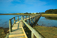 Aberlady Local Nature Reserve, Aberlady Bay, Aberlady, East Lothian