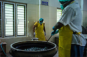 Local workers mix oil with herbs at the Pharmacy of the National Research Institute of Panchakarma in Cheruthuruthy in Thissur district of Kerala, India.