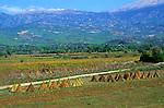 Agricultural landscape and limestone mountain range near Fethiye, Mugla Province,  Turkey