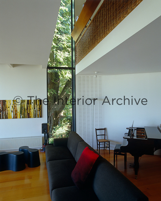 The trunk of a very large elm tree is visible through a narrow window which runs floor-to-ceiling in the spacious living room