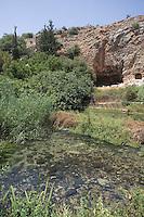 Asie/Israël/Galilée/Plateau du Golan/Réserve de Nahal Hermon: source de Banias