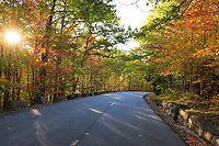 Fall Color in Acadia National Park