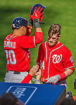 20 April 2013: Washington Nationals outfielder Bryce Harper is greeted by Ian Desmond after hitting a two-run home run in the third inning against the New York Mets at Citi Field in Flushing, NY. Harper went 3 for 3 with 3 RBIs and two home runs as the Nationals defeated the Mets 7-6 to tie their 3-game series at one a piece. Mandatory Credit: Ed Wolfstein Photo *** RAW (NEF) Image File Available ***