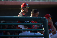 Hickory Crawdads manager Matt Hagan (39) watches the action from the dugout during the game against the Greensboro Grasshoppers at L.P. Frans Stadium on May 26, 2019 in Hickory, North Carolina. The Crawdads defeated the Grasshoppers 10-8. (Brian Westerholt/Four Seam Images)