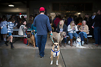 NWA Democrat-Gazette/CHARLIE KAIJO Trevin Tripodi of Pea Eidge hangs out with friends with his boxer, Semper Fi, during a dog show, Saturday, April 21, 2018 at the Rogers Farmer's Market in Rogers.<br />