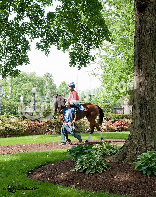 winning at Delaware Park on 5/22/13