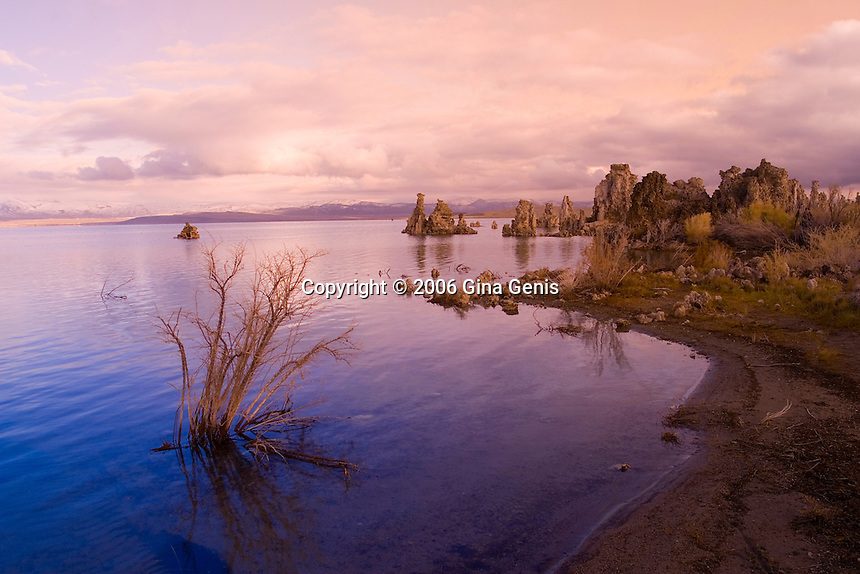 The shoreline of Mono Lake
