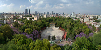 Jacaranda blossoms at Parque Mexico, Aerial drone photo, Colonia Condesa, Mexico City, Mexico