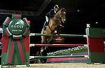 Julien Epaillard of France riding Cristallo A LM in action at the Gucci Gold Cup during the Longines Hong Kong Masters 2015 at the AsiaWorld Expo on 14 February 2015 in Hong Kong, China. Photo by Victor Fraile / Power Sport Images