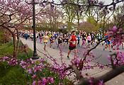 2017 Run Bentonville Half Marathon