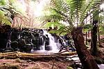 Upper Cam Falls, Tasmania