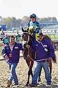 3rd November, 2018, Churchill Downs, Louisville, Kentucky, USA; Stormy Liberal with Drayden van Dyke up after winning the Breeders Cup Turf Sprint. Churchill Downs racecourse.