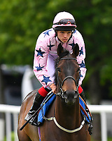 Pursuing Steed ridden by Theodore Ladd goes down to the start of The Shadwell Stud Racing Excellence Apprentice Handicap during Afternoon Racing at Salisbury Racecourse on 12th June 2018