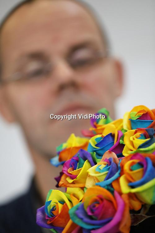 Foto: VidiPhoto<br /> <br /> DELWIJNEN - Het is letterlijk een schot in de roos en de ultieme emotie. De regenboogroos van Happy Colors uit Delwijnen is, evenals andere kleurrijke bloemvarianten, in het buitenland niet aan te slepen, vertelt directeur Dirk Bakker. Waar de Nederlandse consument vooralsnog zeer terughoudend reageert, komen ze in het buitenland superlatieven tekort om het full color (veertig kleurencombinaties) Hollandse initiatief te bejubelen. Via een technisch vernuftig en arbeidsintensief systeem krijgen de ingekochte snijbloemen een kleurenbad, waarna ze via een commissionair wereldwijd worden verspreid. Happy Colors is de enige in Europa die onze nationale trots met een speciale techniek meerkleurig nabehandelt en... niet zonder succes. Op de Keukenhof is dit het meest gefotografeerde product en als zelfs een consument uit Letland op het vliegtuig stapt om persoonlijk in De Bommelerwaard een bos regenboogrozen te gaan halen voor zijn vriendin, kun je gerust spreken van een gat in de buitenlandse markt. Of een Chinees die er 1499 stuks bestelde voor zijn geliefde. De vraag is hoe dan ook enorm. Nu Nederland nog.