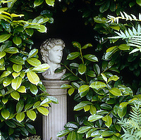 A classical carved bust on a plinth hidden amongst foliage in the garden