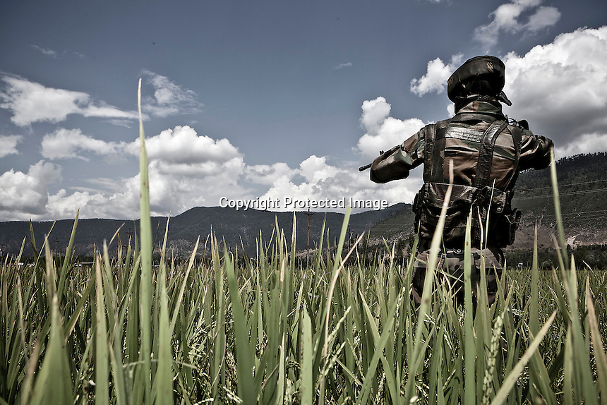 "An Indian soldier, belongs to the special forces deployed at Kupwara, stands guard at the crop fields outskirts of town. In northern Kashmir the Islamic militancy of ""Mujahideen"" is spread out and often engaged in encounters and gun battles with the Indian troops, which have been deployed in the valley in an unofficial figure of more than 800,000 for a population of 15 millions, prompting it as one of the the world's most militarized regions. Kupwara district, Indian administrated Kashmir."
