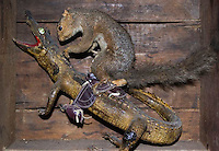 Stuffed squirrel riding a lizard at The American Dime Museum, a collection of oddities, freak show memorabilia and other exhibits from circus side shows of the past.