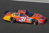 Apr 29, 2007; Talladega, AL, USA; Nascar Nextel Cup Series driver Jeff Burton (31) after crashing during the Aarons 499 at Talladega Superspeedway. Mandatory Credit: Mark J. Rebilas