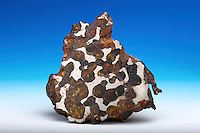 Cross-section of a stony-iron meteorite. Saskatchewan, Canada. Pallasite class. Stony-iron meteorites consist of nearly equal parts of iron and silicates. This category of meteorite is rare, comprising less than 2% found.