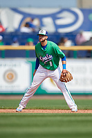 Hartford Yard Goats shortstop Ryan Metzler (8) during a game against the Trenton Thunder on August 26, 2018 at Dunkin' Donuts Park in Hartford, Connecticut.  Trenton defeated Hartford 8-3.  (Mike Janes/Four Seam Images)