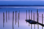 Fishing Piers along Puget Sound
