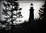 A lighthouse amongst fir trees