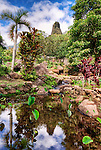 Reflections of the Iao Needle in a small pond in the Iao Valley, Maui
