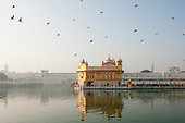 Amritsar, Punjab, India. The Golden Temple - Harmandir Sahib - at dawn with flying pigeons; the Amrit Sarovar pool.