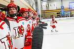 ADRIAN, MI - MARCH 18: Plattsburgh State University watches the game from the bench during the Division III Women's Ice Hockey Championship held at Arrington Ice Arena on March 19, 2017 in Adrian, Michigan. Plattsburgh State defeated Adrian 4-3 in overtime to repeat as national champions for the fourth consecutive year. by Tony Ding/NCAA Photos via Getty Images)