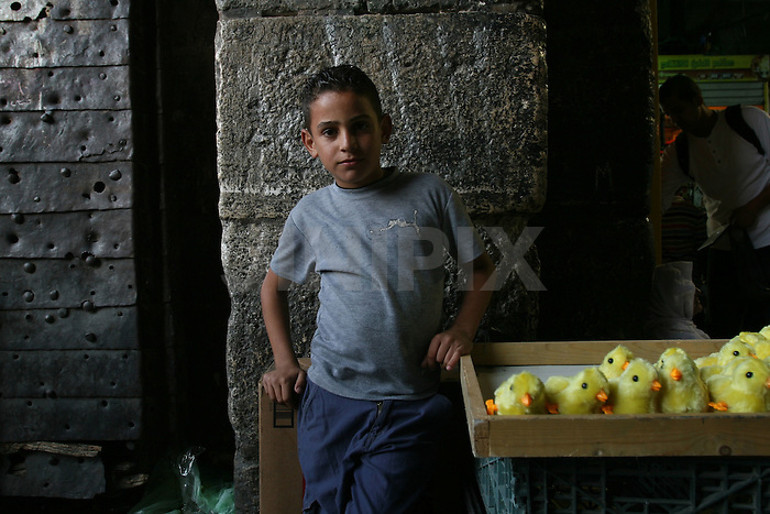 Portrait of an unknown Palestinian youth who works in one of the markets in east Jerusalem's old city. December 1, 2008. .Photo by : Tess Scheflan/ JINI