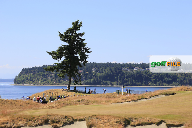 Lone tree at the 16th tee during Wednesday's Practice Day of the 2015 U.S. Open 115th National Championship held at Chambers Bay, Seattle, Washington, USA. 6/17/2015.<br /> Picture: Golffile | Eoin Clarke<br /> <br /> <br /> <br /> <br /> All photo usage must carry mandatory copyright credit (&copy; Golffile | Eoin Clarke)