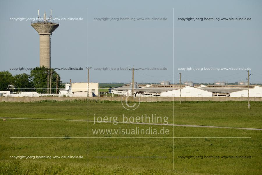 ROMANIA Banat Timisoara / RUMAENIEN Banat, Temeswar, Schweinemastbetrieb mit 10.000 Sauen des amerik, Unternehmens Smithfields im Dorf Cenei