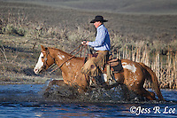 A photo of a cowboy riding his horse through a river. Cowboys and cowgirls living the western lifestyle.