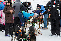A crowd gathers around Newton Marshall and team in the finish chute after he arrived in 43rd place in Nome on Friday March 14 during the 2014 Iditarod Sled Dog Race.<br /> <br /> PHOTO (c) BY JEFF SCHULTZ/IditarodPhotos.com -- REPRODUCTION PROHIBITED WITHOUT PERMISSION