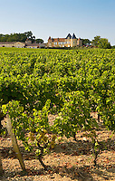 Chateau d'Yquem, Sauternes, France constructed in 15th Century with later additions