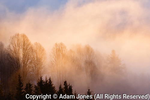 Winter sunset and mist, Homer, Alaska