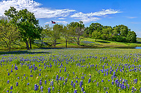 Bluebonnets along along the Blueblonnet trail in Ennis Texas .  We went up for their for the bluebonnet festival they have every April.  While the flowers were not a thick as previous years it certainly was a pretty landscape scene with the wildflowers, blue sky  along the creek with the Texas flag in the back ground representing this texas bluebonnet landscape.