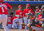 9 March 2013: Washington Nationals outfielders Bryce Harper (left) and Jayson Werth watch a pitch from the steps of the dugout during a Spring Training game against the Miami Marlins at Space Coast Stadium in Viera, Florida. The Nationals edged out the Marlins 8-7 in Grapefruit League play. Mandatory Credit: Ed Wolfstein Photo *** RAW (NEF) Image File Available ***