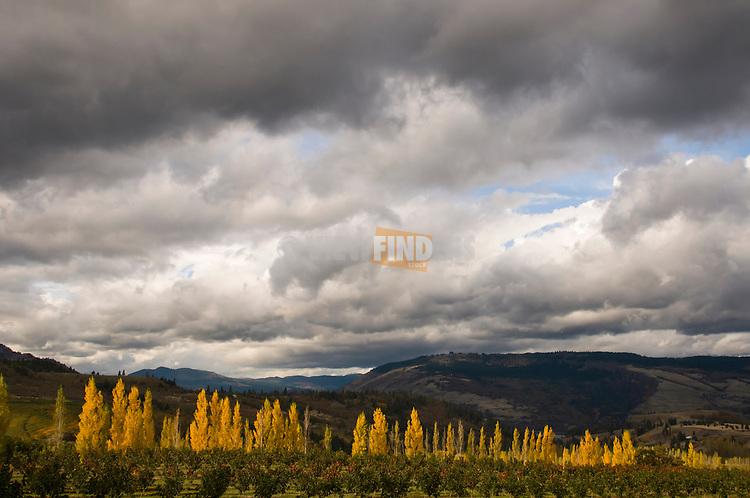 Mosier Valley landscape.