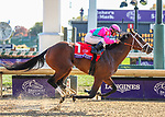 November 3, 2018: City of Light #1, ridden by Javier Castellano, wins the Breeders' Cup Dirt Mile on Breeders' Cup World Championship Saturday at Churchill Downs on November 3, 2018 in Louisville, Kentucky. Candice Chavez/Eclipse Sportswire/CSM