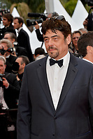Benicio Del Toro at the gala screening for &quot;Solo: A Star Wars Story&quot; at the 71st Festival de Cannes, Cannes, France 15 May 2018<br /> Picture: Paul Smith/Featureflash/SilverHub 0208 004 5359 sales@silverhubmedia.com