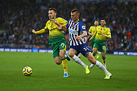 Tom Trybull of Norwich City and Dan Burn of Brighton & Hove Albion during Brighton & Hove Albion vs Norwich City, Premier League Football at the American Express Community Stadium on 2nd November 2019