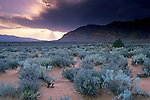 Storm clouds at sunset over sage covered valley near Ivins, near St. George, UTAH