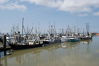Commercial fishing boats on the Fraser River at Steveston, British  Columbia.