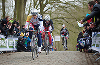 Gent-Wevelgem 2013.André Greipel (DEU) up the Kemmelberg.