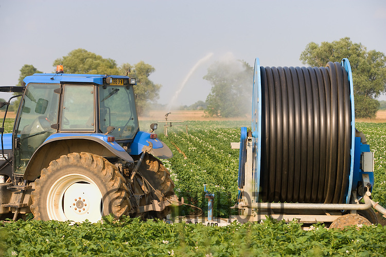Irrigation Reel In A Potato Crop.