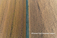 63801-10408 Dividing line between two corn fields before harvest-aerial Marion Co. IL